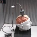 A legújabb sikeres chipbeültetés eredménye gondolatátvitel egyik agyból a másikba
