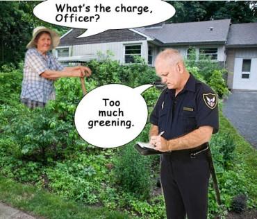 http://endtimeinfo.com/wp-content/uploads/2011/12/illegal-gardening-370x316.jpg