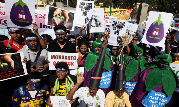 India Slams Monsanto with Unprecedented Biopiracy Charges