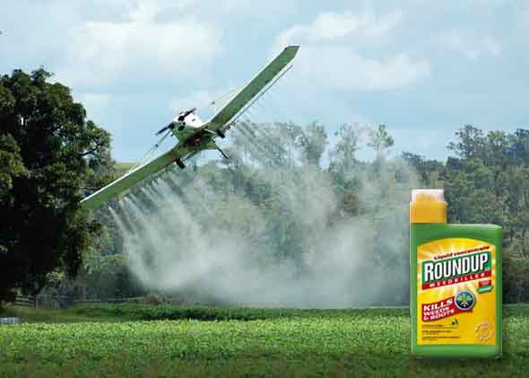 Monsanto&#8217;s Roundup threatens stability of global food supply