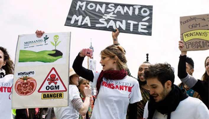 A Monsanto visszavonja az új magok engedélykérelmeit Európában és inkább a behozatalra összpontosít