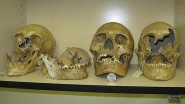 Giant-Skulls