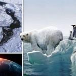 A sarki jég nem olvad, mondja a szakértő