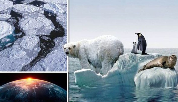 Ice in the Arctic and Antarctic is 'not melting', says global warming expert