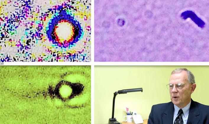 A kutatók szerint ezek szabad szemmel nem látható entitások képei