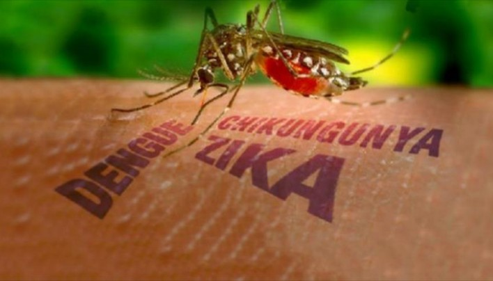 Zika freakout: the hoax and the covert op continue